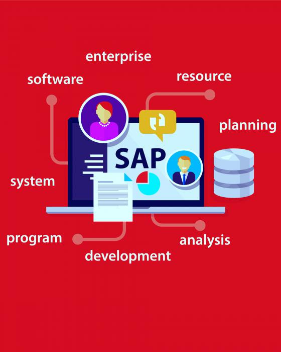 ERP - SAP Consulting